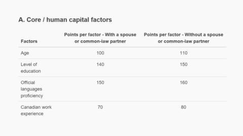 Human capital factors